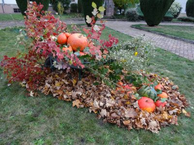 Celebration of Fall and Creation at Saint Jean de Bassel